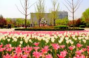 淄博市植物园1.jpg