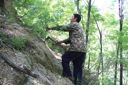 3000多亩山林的守护神 38年用脚步丈量30万里山路(好人365) - yangruihe987 - 1號
