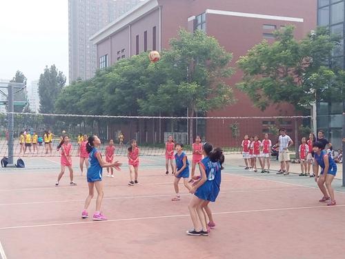 排球比赛-淄博文明网
