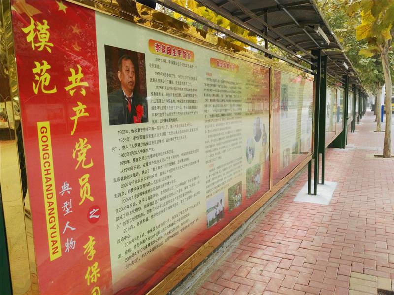阅读展板上爱国名人和模范党员的事迹.图片来源:淄博九级村